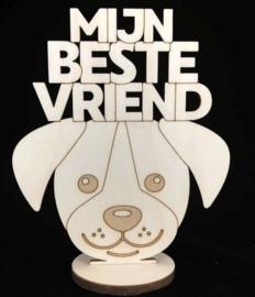 Mijn Beste Vriend