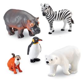 Jumbo zoo dieren