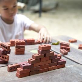 Petites briques