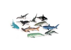 Oceaandieren sorteerset (levensecht)