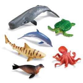Jumbo oceaan dieren