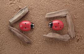 Telstenen lieveheersbeestjes