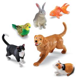 Jumbo huisdieren