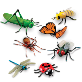 Jumbo insecten