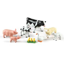 Jumbo boerderij dieren