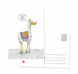 Postcard newborn alpaca 'Hello little one!' | per 5 stuks