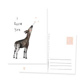 Postcard - Okapi  I love you | per 5