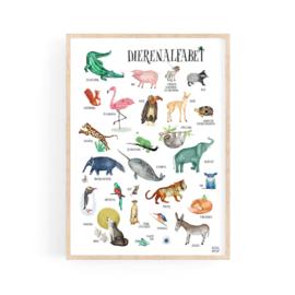 poster  ABC dieren  - A4 | per 5
