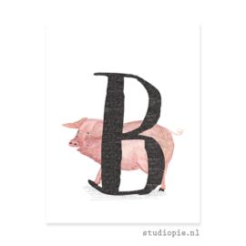 nabestelling letterkaartjes | per 30