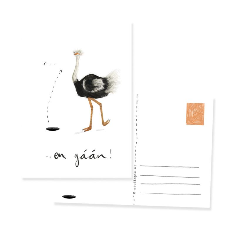 ansichtkaart struisvogel EN GAAN   per 5 stuks