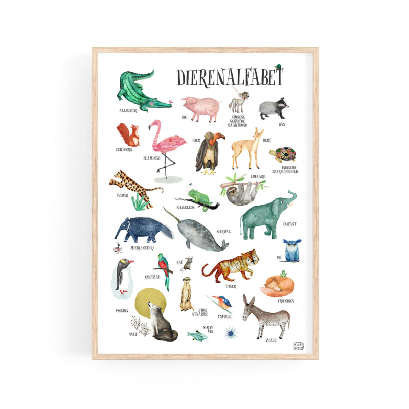 poster  ABC dieren  - A4   per 5