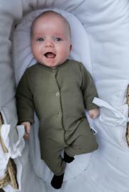 BOXPAKJE BABY RIB OLIJF GROEN