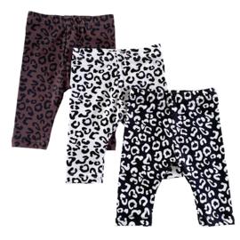 Legging - Leopard