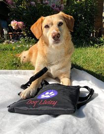 Multifunctional DOG TREAT BAG