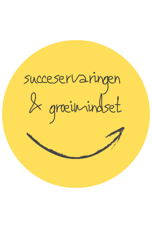 De positieve school module 5: Succeservaringen & groeimindset - 24 juni 2021