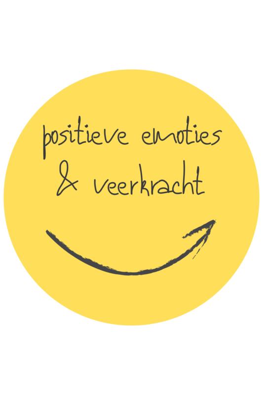 De positieve school module 2: Positieve emoties & veerkracht - 27 mei 2021
