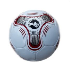 vv Akkrum voetbal