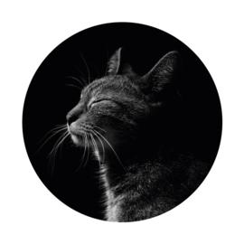 Houten muurcirkel met eigen foto of print