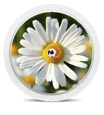 Freestyle Libre Sensor Sticker - Daisy
