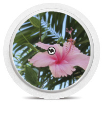 Freestyle Libre Sensor Sticker - Exotic Flower