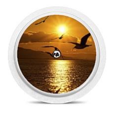 Freestyle Libre Sensor Sticker - Sunset