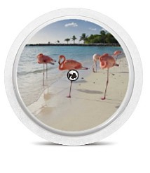 Freestyle Libre Sensor Sticker - Real Flamingo