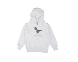 Hoodie - Dinosaur Dark Grey