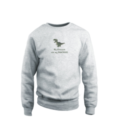 Sweater - Dinosaur Grau