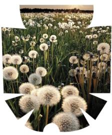 Omnipod Sticker - Dandelion