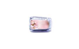 Dexcom G5 Sticker - Spring