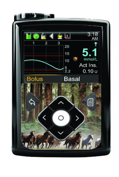 Medtronic 640G/670G Sticker - Running Horses