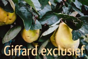 Giffard exclusieve siroop
