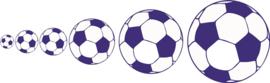 Voetbal set van 6 stuks