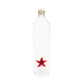 Star fish water bottle