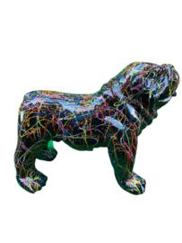 Dog medium