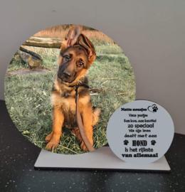 Decoratie cirkels op plankje | Hond