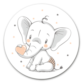 Muurcirkel | Baby olifant