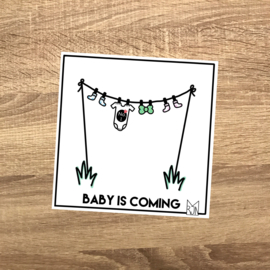 1st Baby is coming