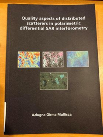 Quality aspects of distributed scatterers in polarimetric differential SAR interferometry