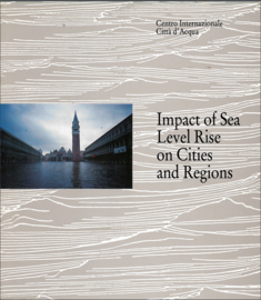 Impact of sea level rise on cities and regions