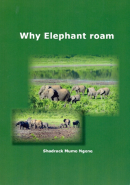 Why elephant roam
