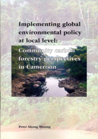 Implementing global environmental policy at local level