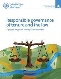 Responsible governance of tenure and the law