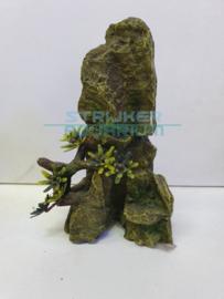 rots met plant groen