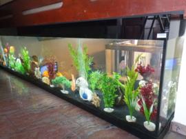 Maatwerk aquarium afgewerkt met Lacobel (gekleurd glas)