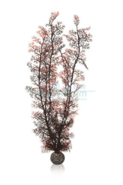 biOrb hoornkoraal XL donkerrood