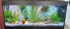 Juwel aquarium Rio 240 LED