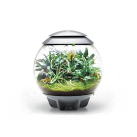 biOrb AIR 60  terrarium