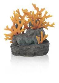 biOrb Lavasteen met vuurkoraal ornament