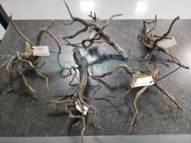 Scapers  /spiderwood super mooi vertakt hout